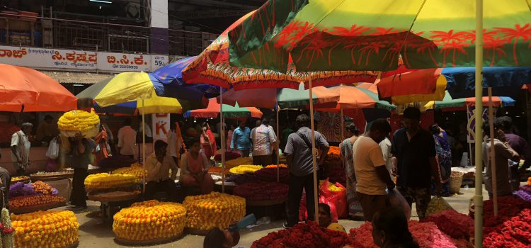 Why I love India!